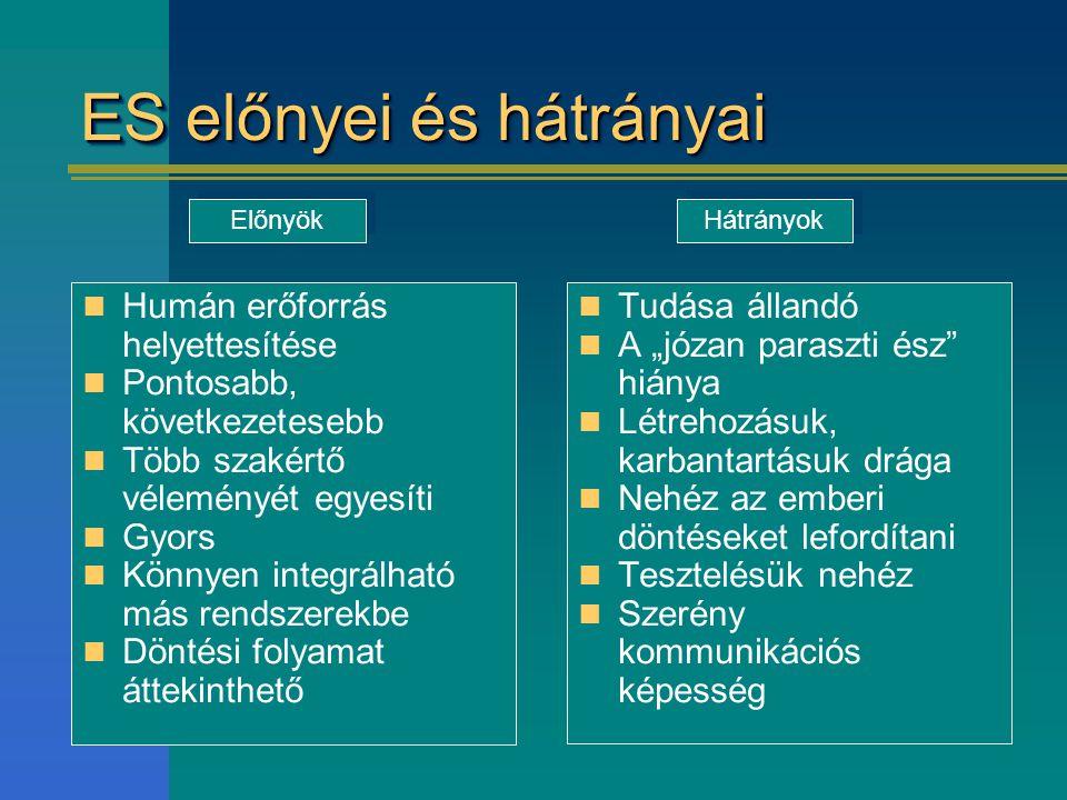 ES előnyei és hátrányai