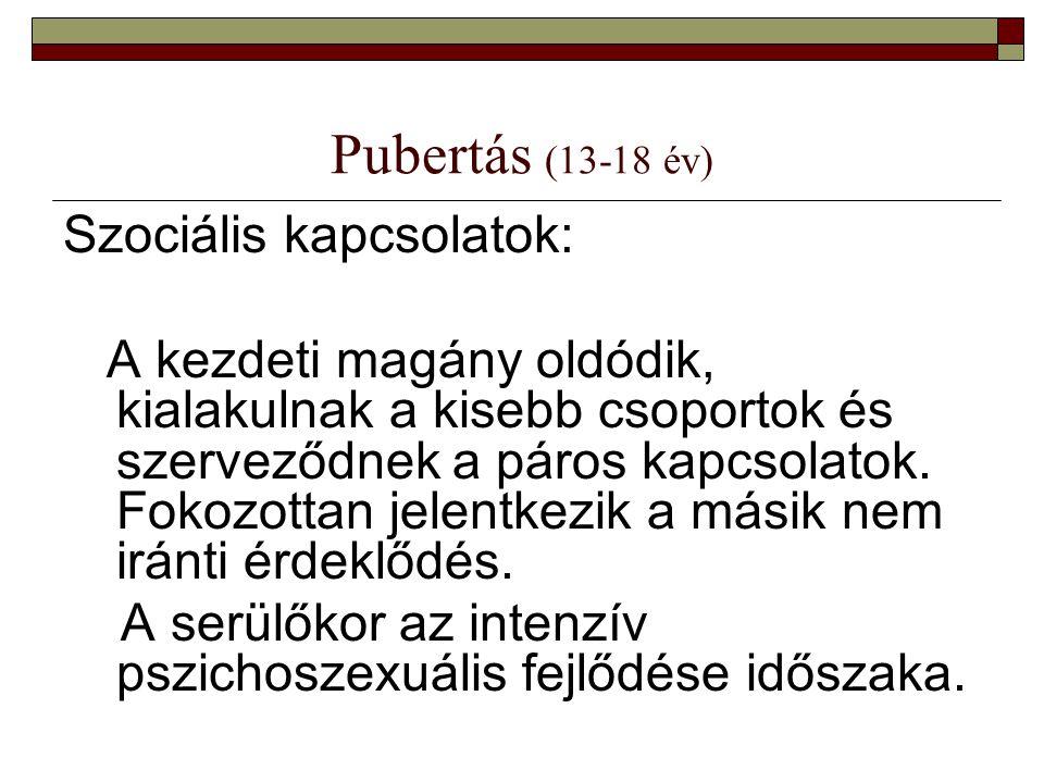 Pubertás (13-18 év) Szociális kapcsolatok: