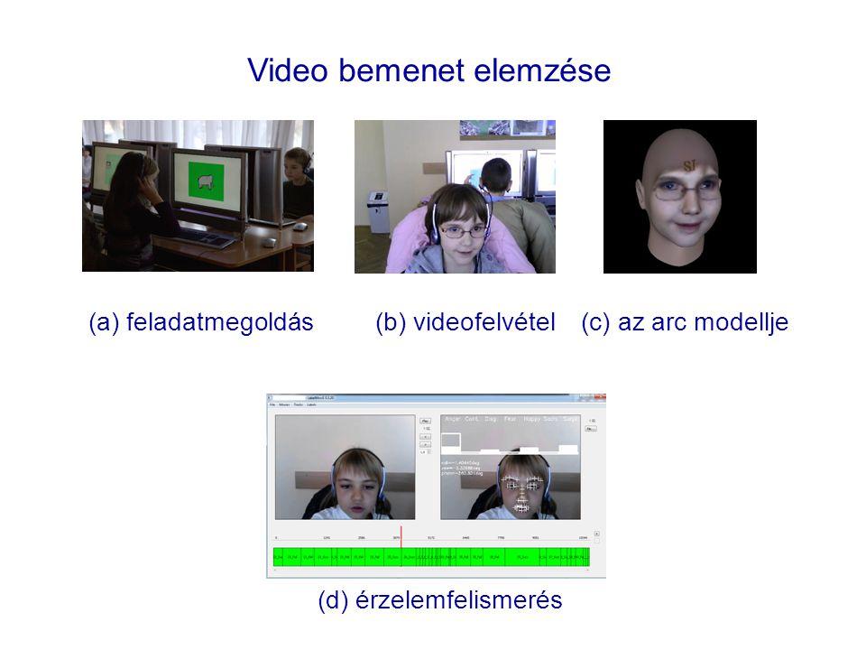 Video bemenet elemzése
