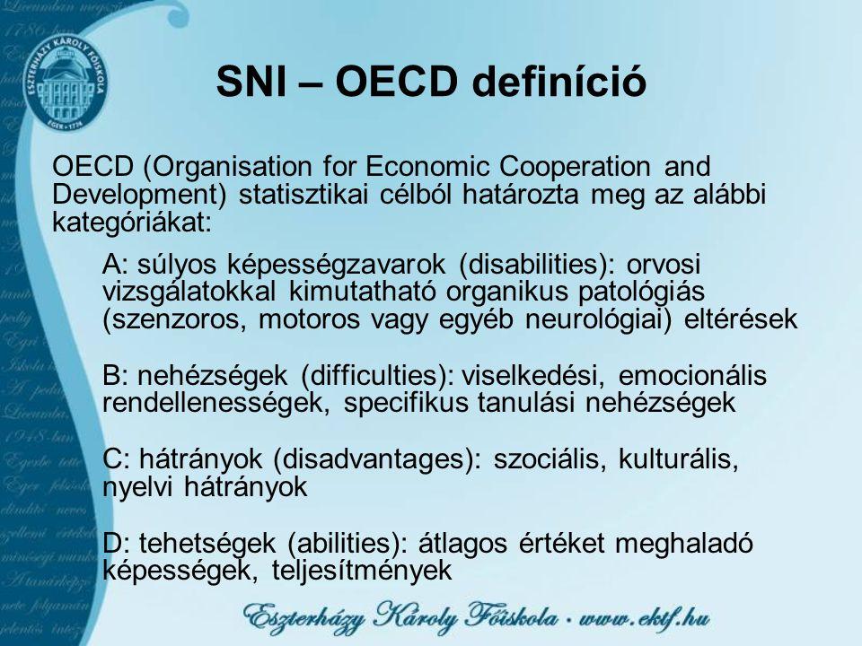 SNI – OECD definíció OECD (Organisation for Economic Cooperation and Development) statisztikai célból határozta meg az alábbi kategóriákat: