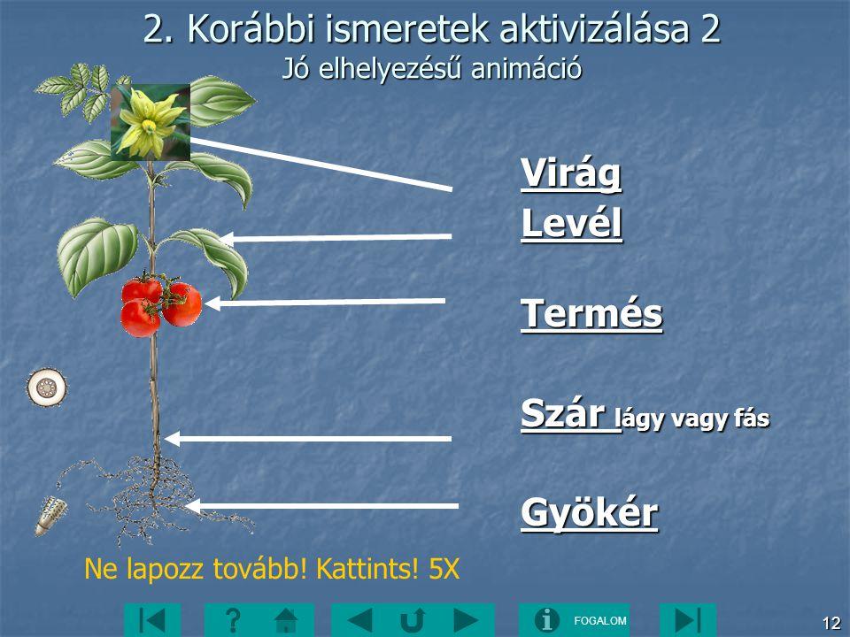 2. Korábbi ismeretek aktivizálása 2 Jó elhelyezésű animáció
