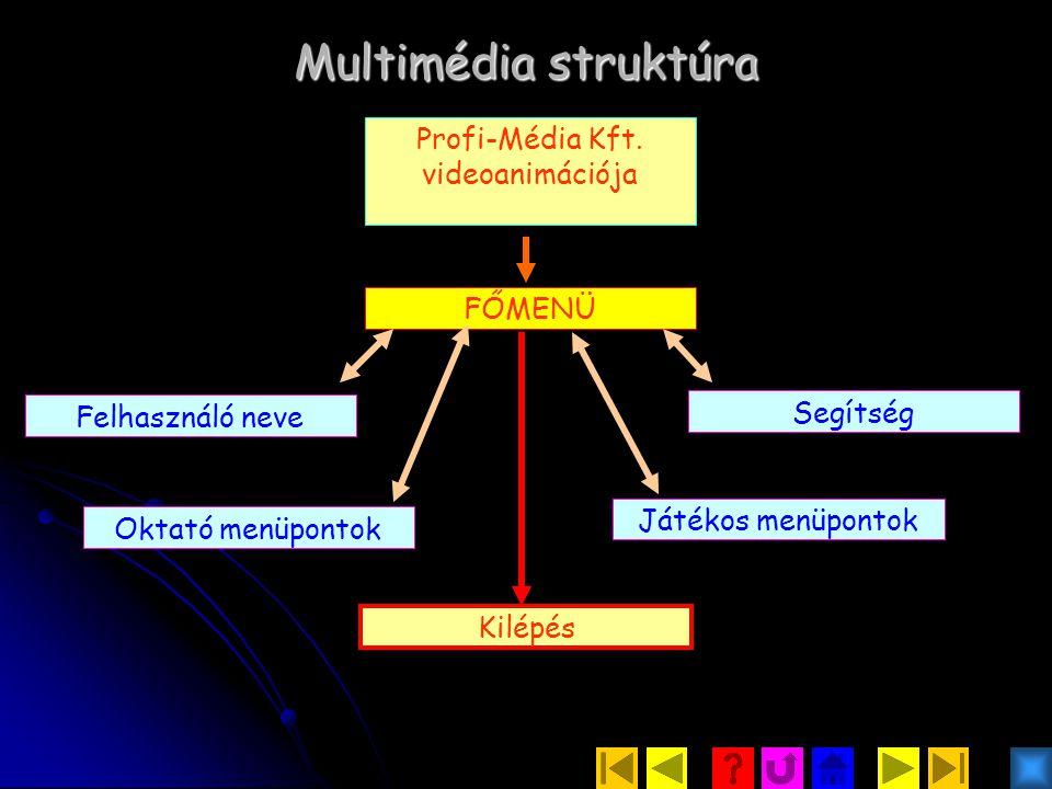 Profi-Média Kft. videoanimációja