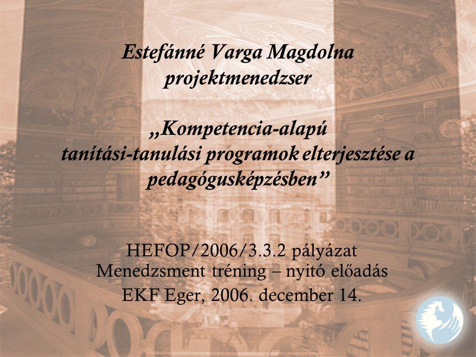 HEFOP/2006/3.3.2 pályázat Menedzsment tréning – nyitó előadás
