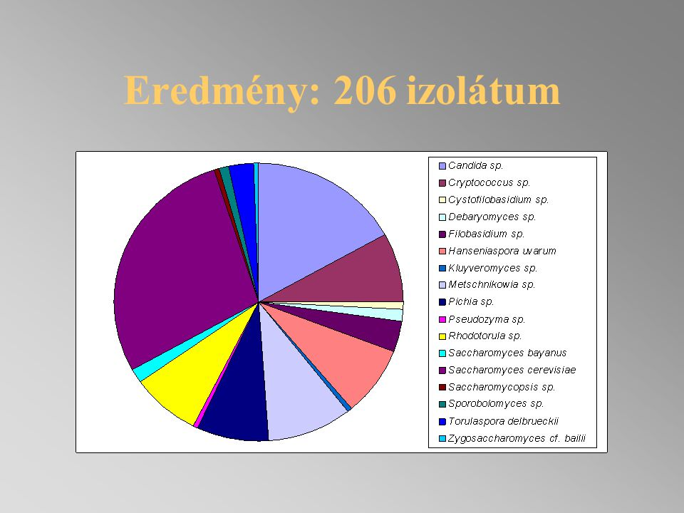 Eredmény: 206 izolátum