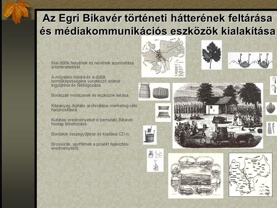 Az Egri Bikavér történeti hátterének feltárása és médiakommunikációs eszközök kialakítása