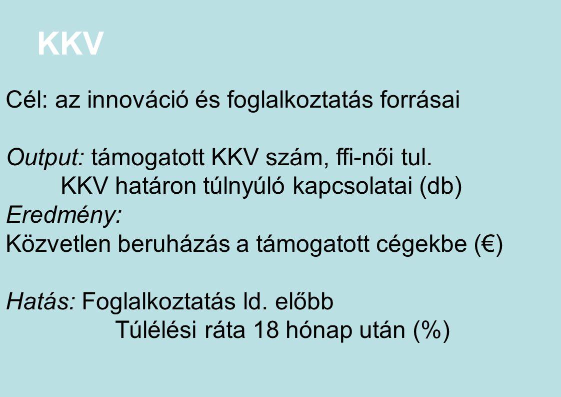 KKV Cél: az innováció és foglalkoztatás forrásai