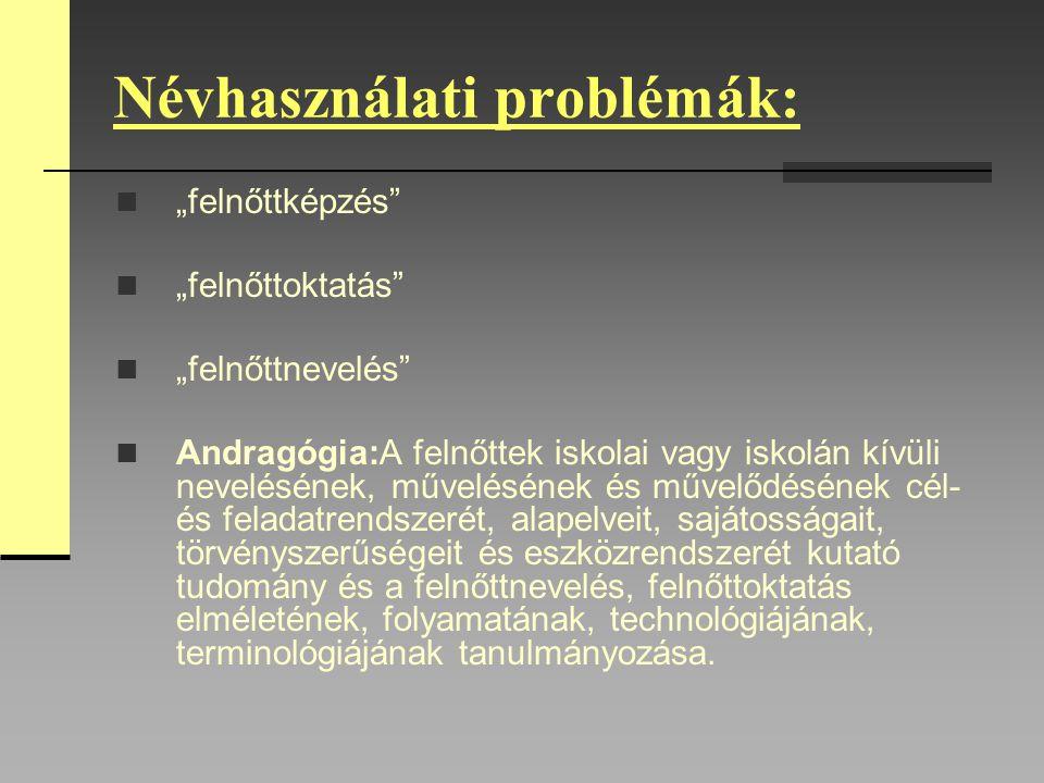 Névhasználati problémák: