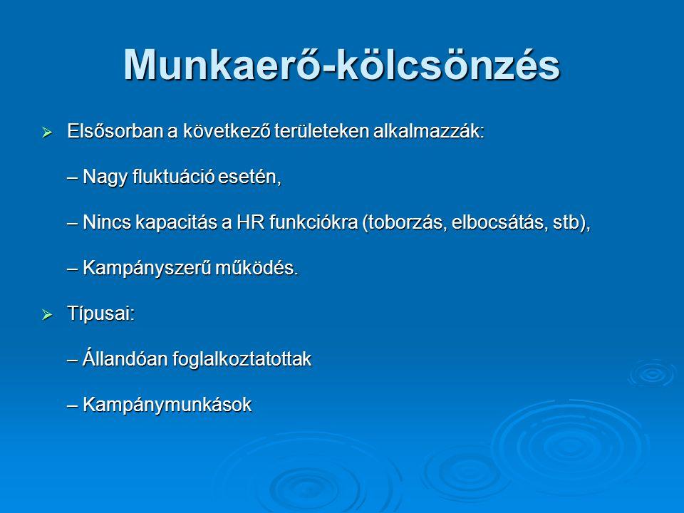 Munkaerő-kölcsönzés Elsősorban a következő területeken alkalmazzák: