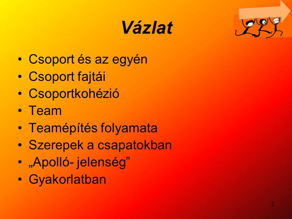 Vázlat Csoport és az egyén Csoport fajtái Csoportkohézió Team