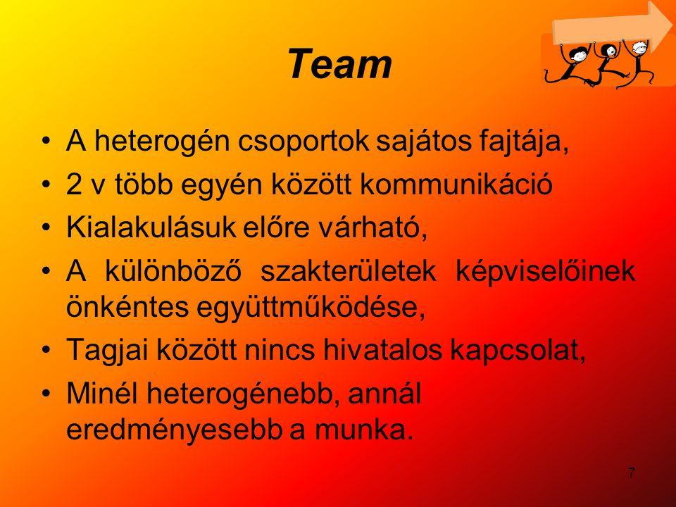 Team A heterogén csoportok sajátos fajtája,