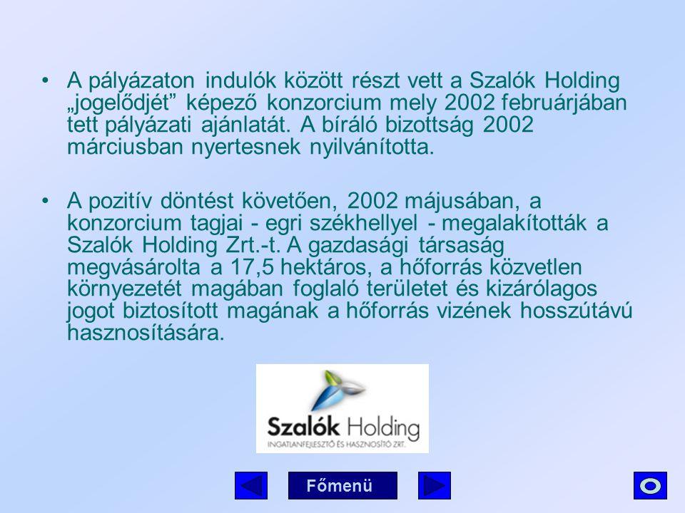 """A pályázaton indulók között részt vett a Szalók Holding """"jogelődjét képező konzorcium mely 2002 februárjában tett pályázati ajánlatát. A bíráló bizottság 2002 márciusban nyertesnek nyilvánította."""