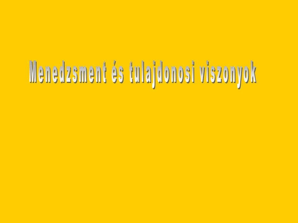 Menedzsment és tulajdonosi viszonyok