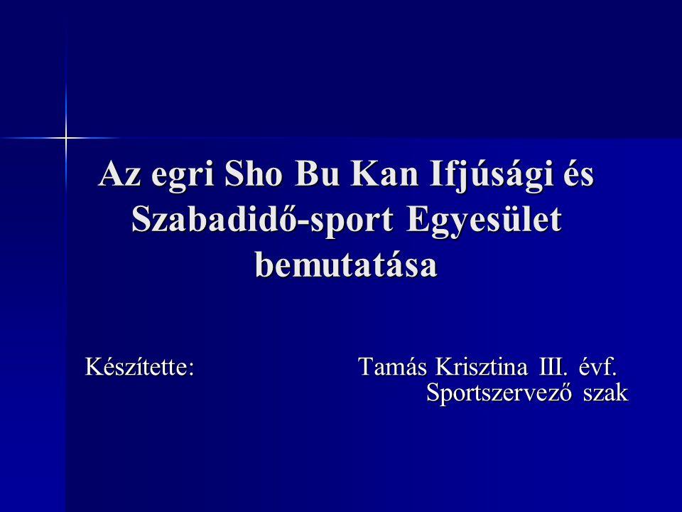 Az egri Sho Bu Kan Ifjúsági és Szabadidő-sport Egyesület bemutatása