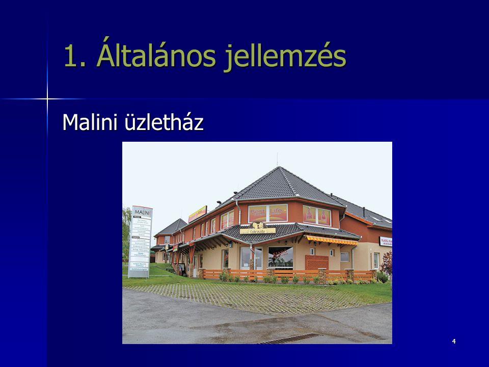 1. Általános jellemzés Malini üzletház