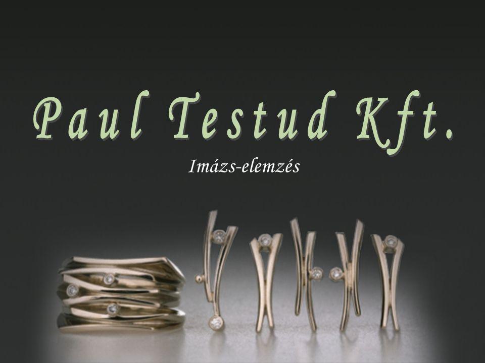 Paul Testud Kft. Imázs-elemzés