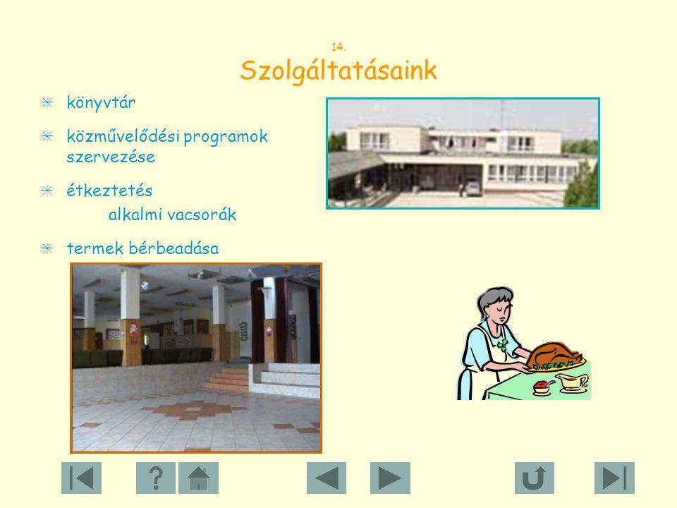 közművelődési programok szervezése