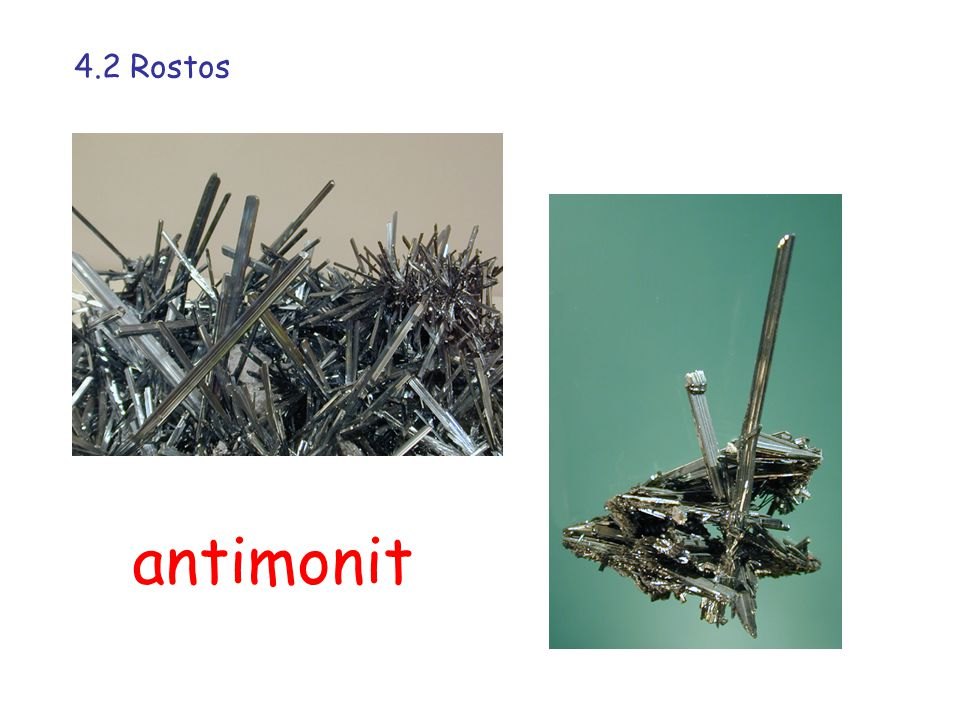 4.2 Rostos antimonit