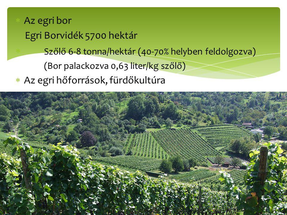 Szőlő 6-8 tonna/hektár (40-70% helyben feldolgozva)