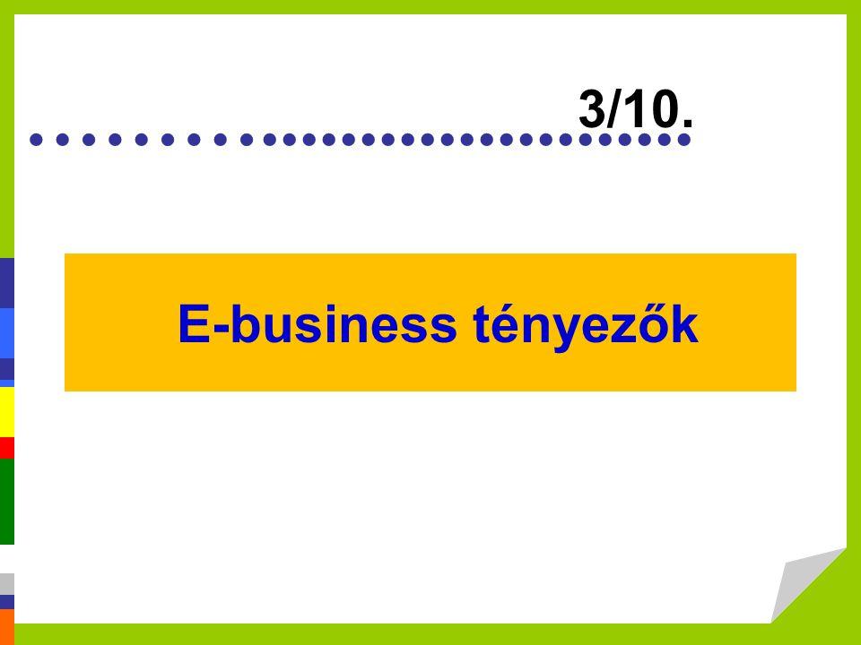 3/10. E-business tényezők