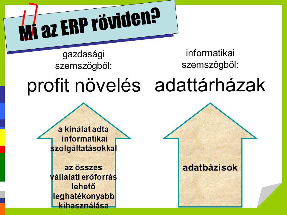 Mi az ERP röviden profit növelés adattárházak