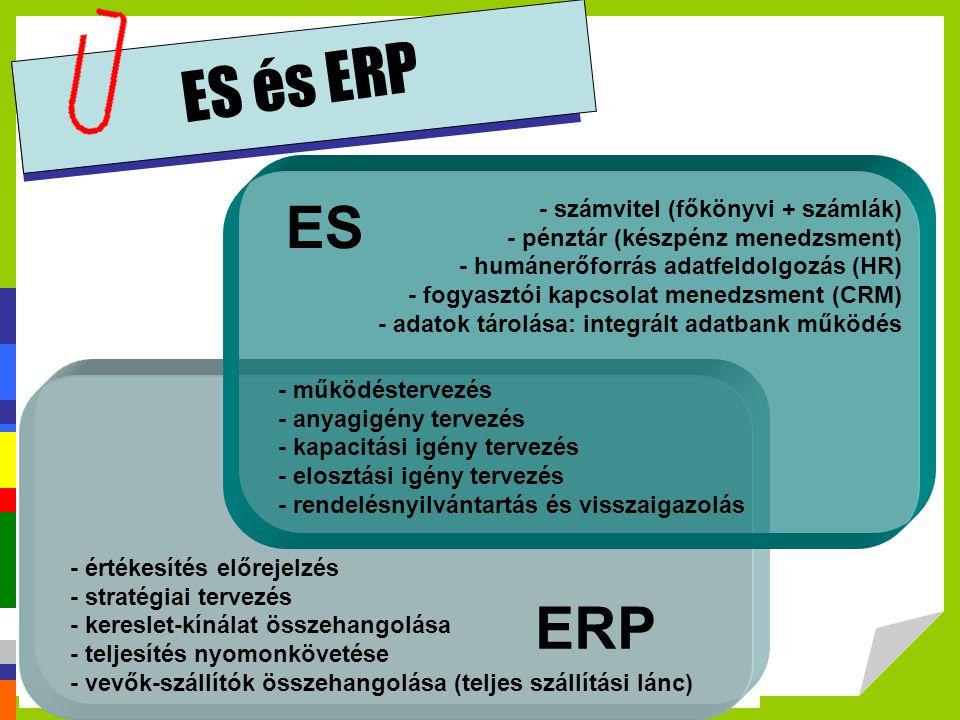ES és ERP ES ERP - számvitel (főkönyvi + számlák)