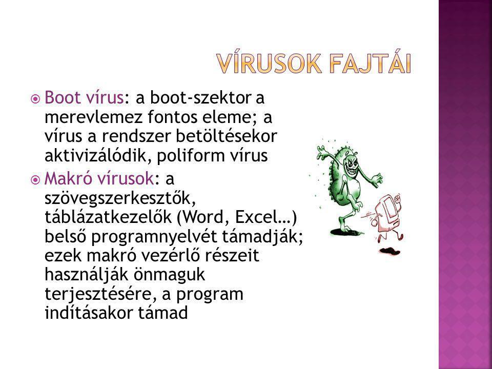 Vírusok fajtái Boot vírus: a boot-szektor a merevlemez fontos eleme; a vírus a rendszer betöltésekor aktivizálódik, poliform vírus.