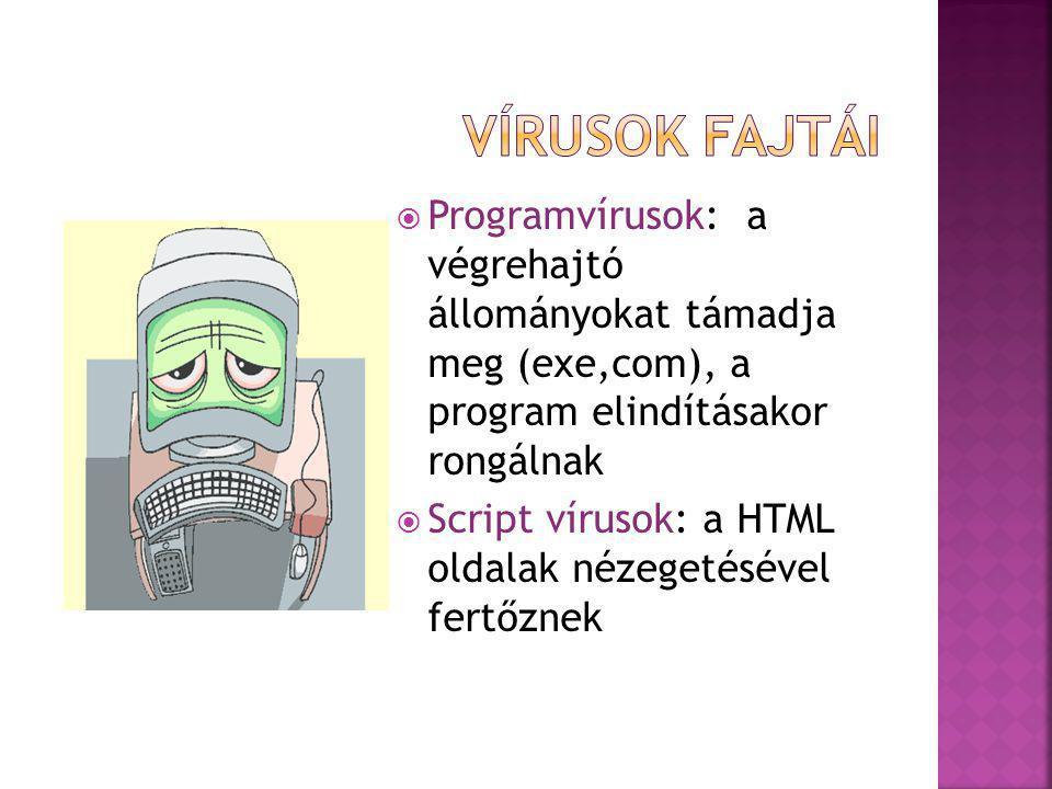 Vírusok fajtái Programvírusok: a végrehajtó állományokat támadja meg (exe,com), a program elindításakor rongálnak.