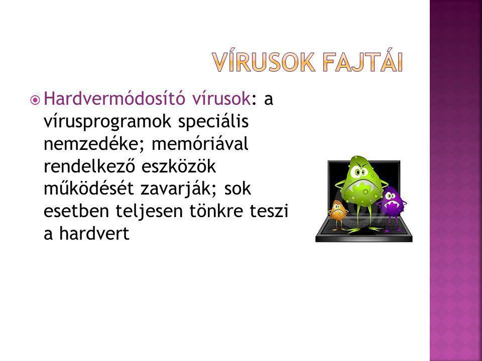 Vírusok fajtái