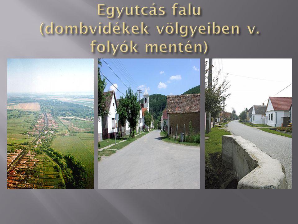 Egyutcás falu (dombvidékek völgyeiben v. folyók mentén)