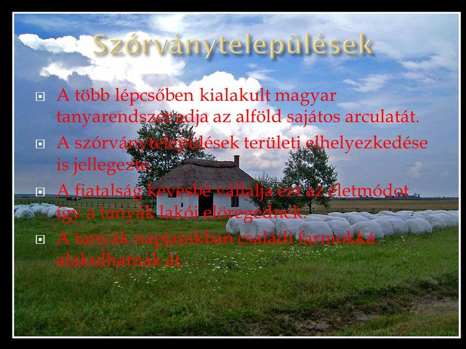 Szórványtelepülések A több lépcsőben kialakult magyar tanyarendszer adja az alföld sajátos arculatát.