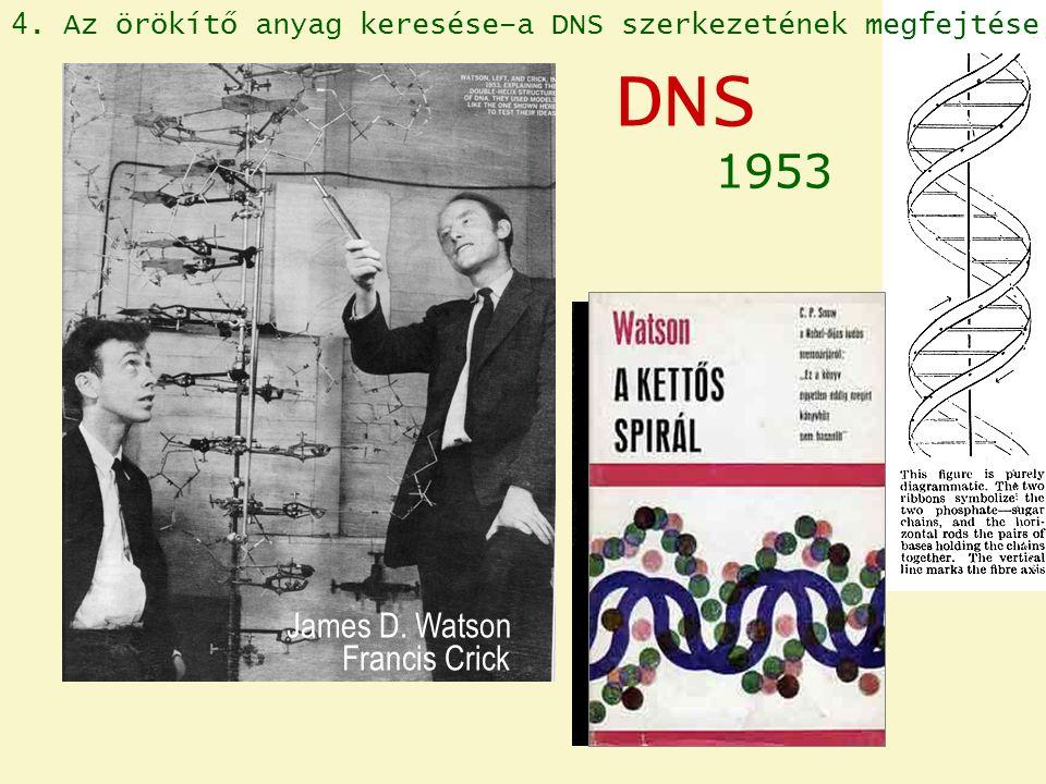 DNS 1953 James D. Watson Francis Crick