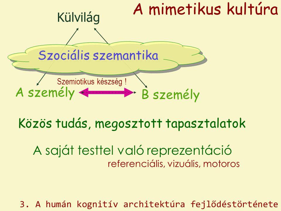 A mimetikus kultúra Külvilág Szociális szemantika A személy B személy