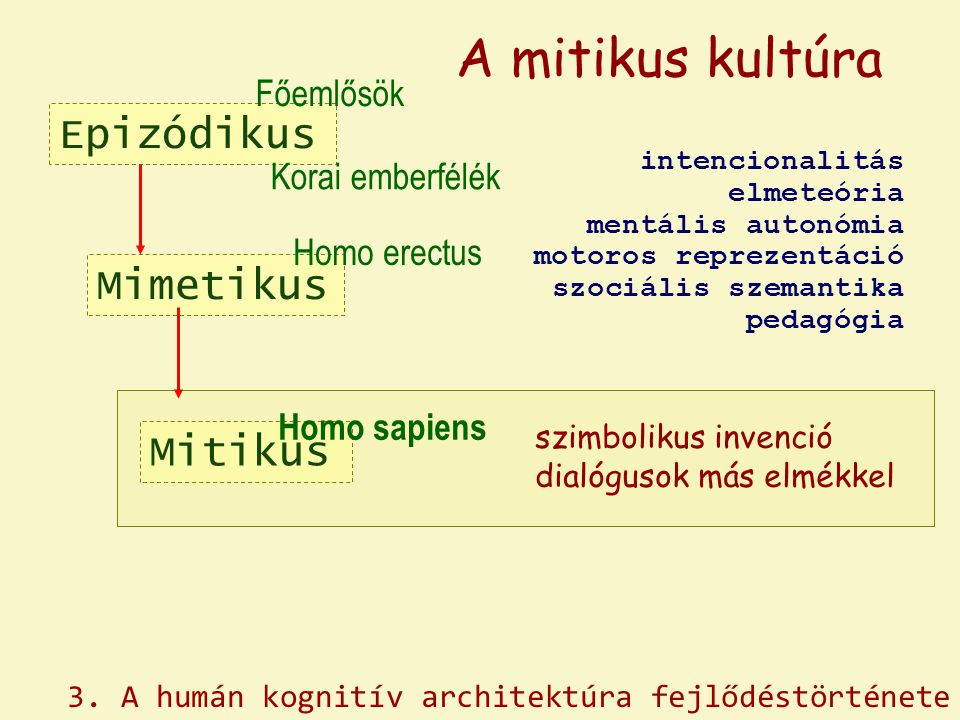 A mitikus kultúra Epizódikus Mimetikus Mitikus Főemlősök