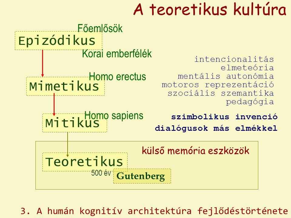 A teoretikus kultúra Epizódikus Mimetikus Mitikus Teoretikus Főemlősök