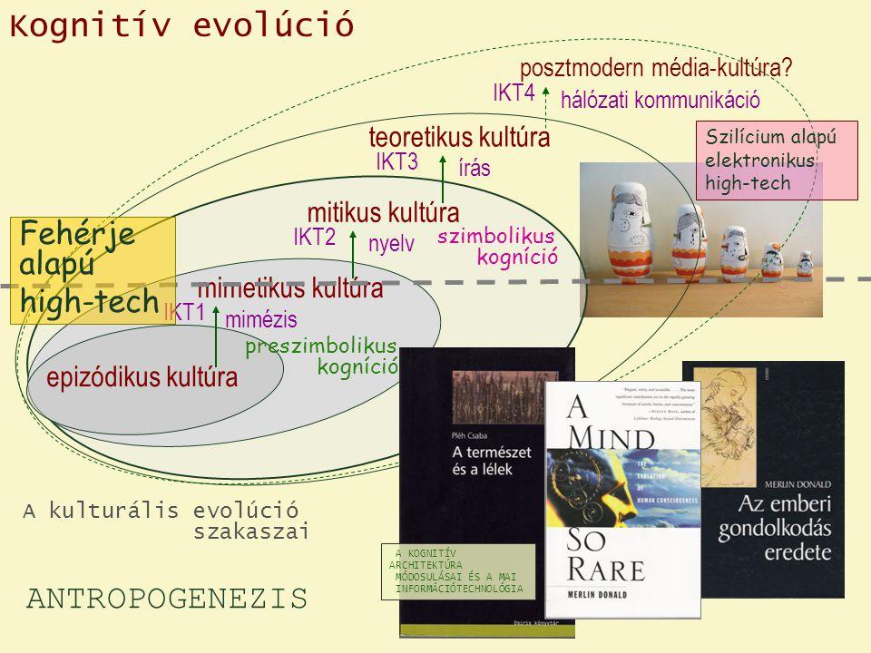 Kognitív evolúció ANTROPOGENEZIS Fehérje alapú high-tech