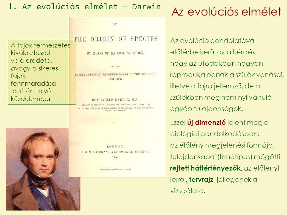 Az evolúciós elmélet 1. Az evolúciós elmélet - Darwin
