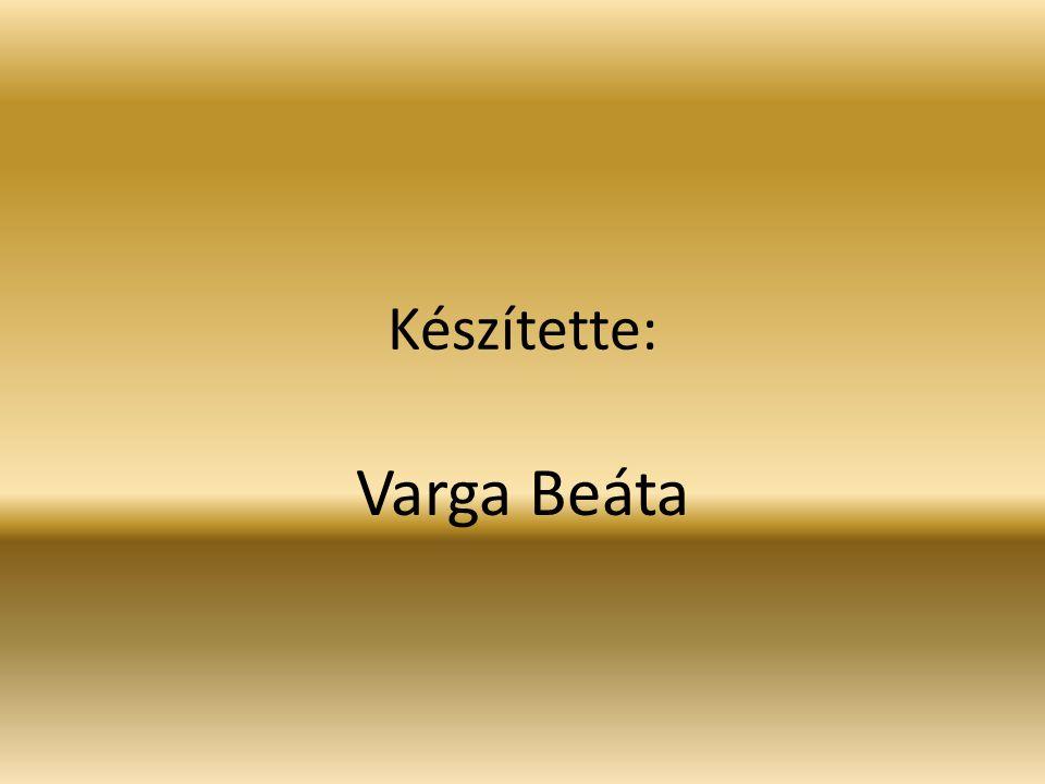 Készítette: Varga Beáta