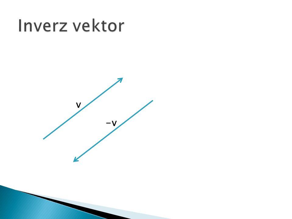 Inverz vektor v -v