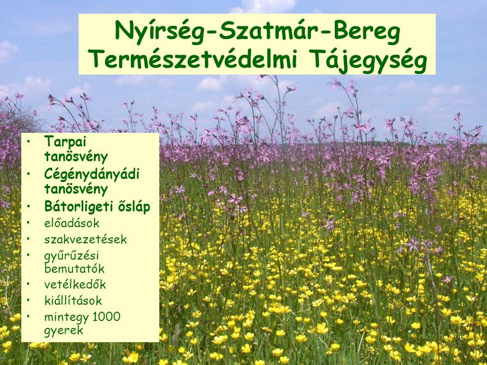 Nyírség-Szatmár-Bereg Természetvédelmi Tájegység