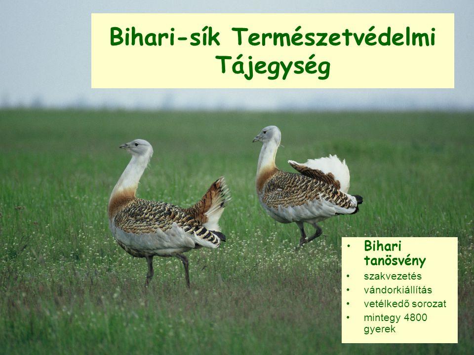 Bihari-sík Természetvédelmi Tájegység