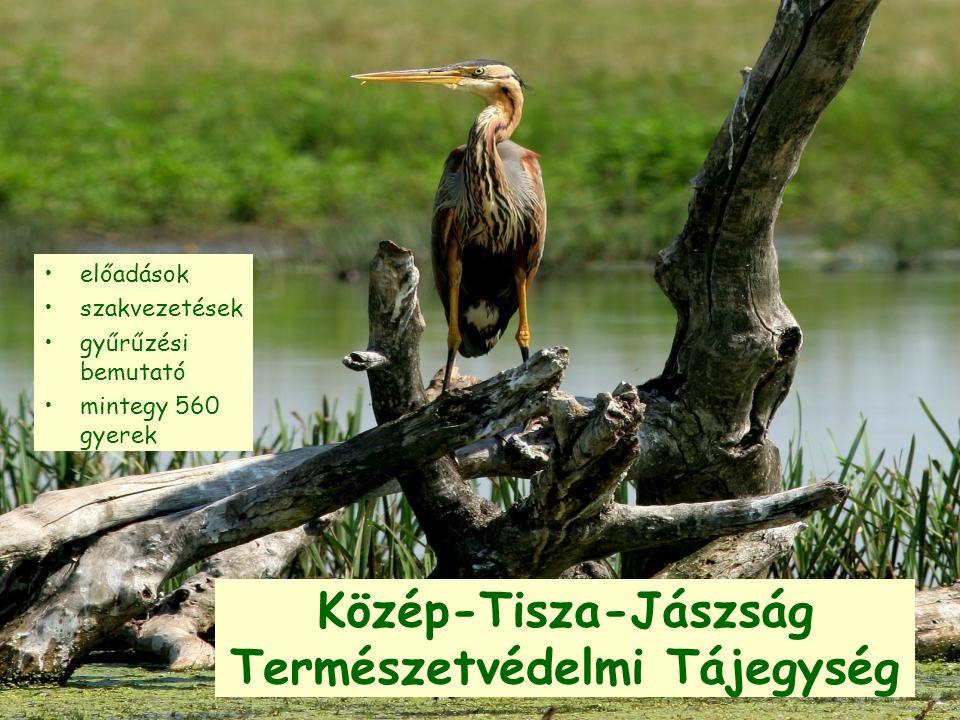 Közép-Tisza-Jászság Természetvédelmi Tájegység