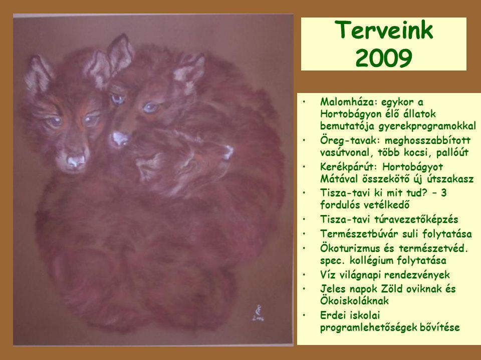 Terveink 2009 Malomháza: egykor a Hortobágyon élő állatok bemutatója gyerekprogramokkal.