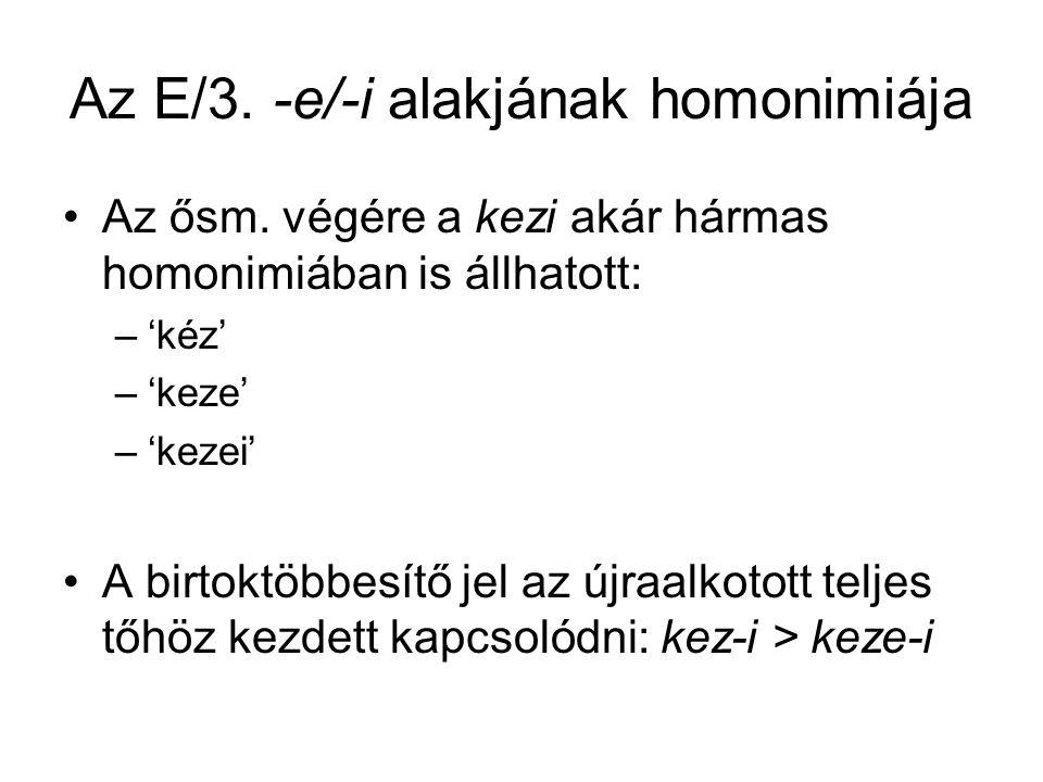 Az E/3. -e/-i alakjának homonimiája