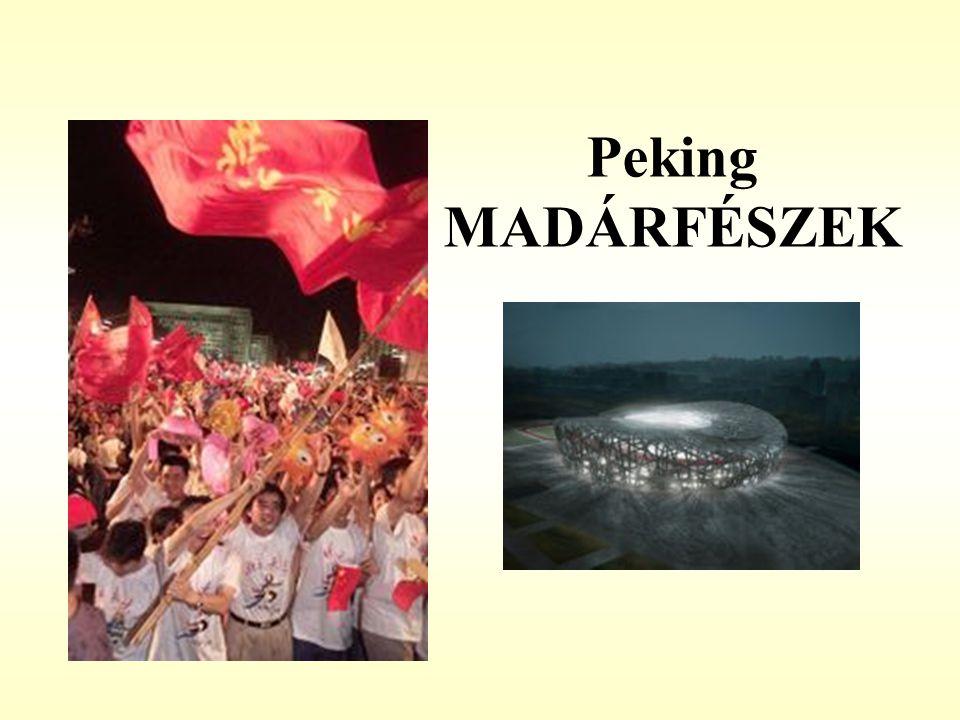Peking MADÁRFÉSZEK