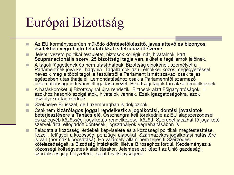 Európai Bizottság Az EU kormányszerűen működő döntéselőkészítő, javaslattevő és bizonyos esetekben végrehajtó feladatokkal is felruházott szerve.