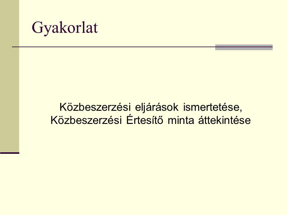 Gyakorlat Közbeszerzési eljárások ismertetése, Közbeszerzési Értesítő minta áttekintése