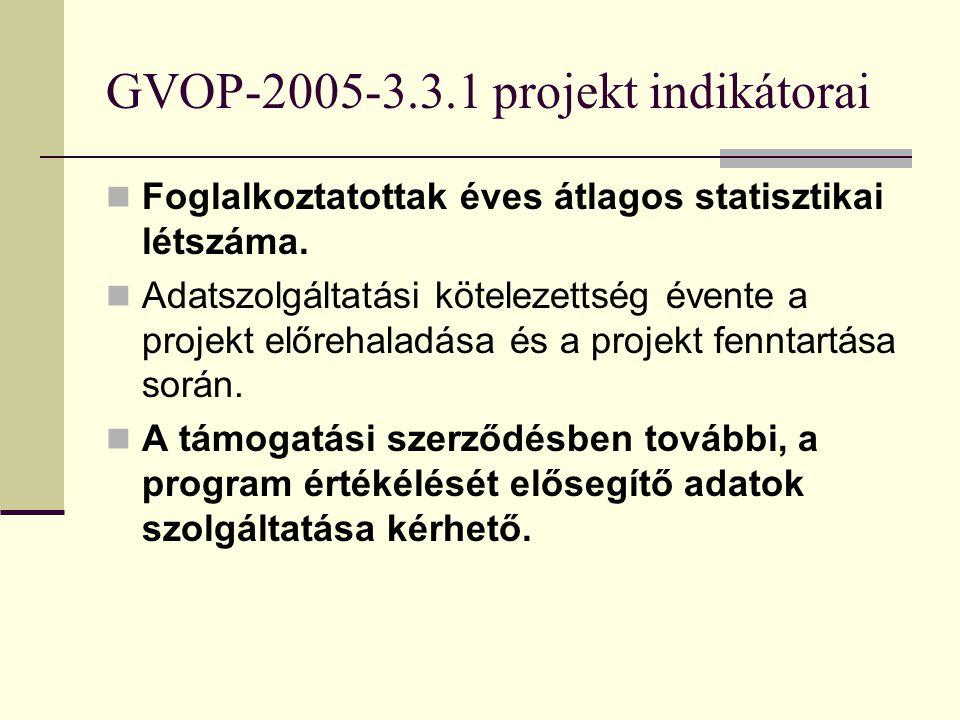 GVOP-2005-3.3.1 projekt indikátorai