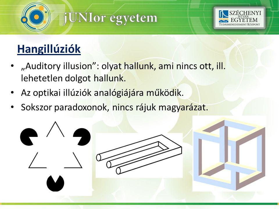 """Hangillúziók """"Auditory illusion : olyat hallunk, ami nincs ott, ill. lehetetlen dolgot hallunk. Az optikai illúziók analógiájára működik."""