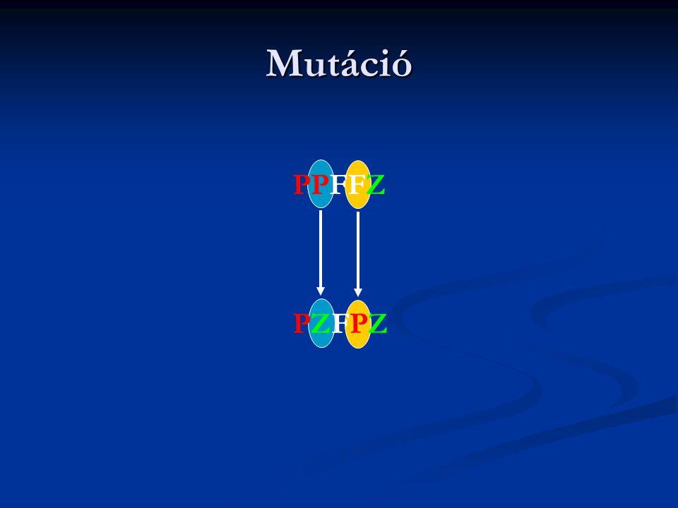 Mutáció PPFFZ PZFPZ