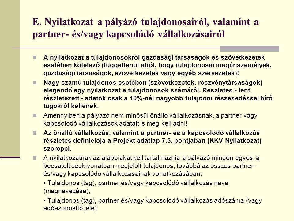 E. Nyilatkozat a pályázó tulajdonosairól, valamint a partner- és/vagy kapcsolódó vállalkozásairól